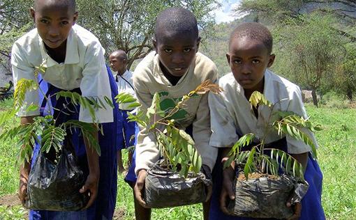 Napanda Tours and Safaris social commitment - tree planting
