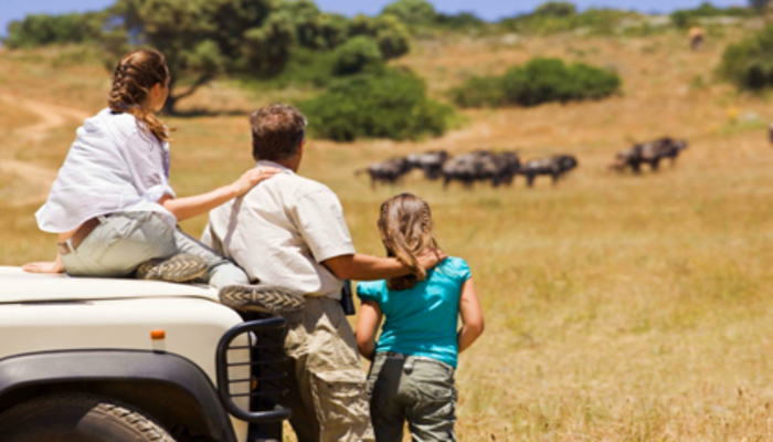 tanzania safari is the ultimate safari family activity