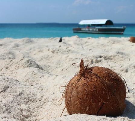 Tanzania safari and beach holiday tour