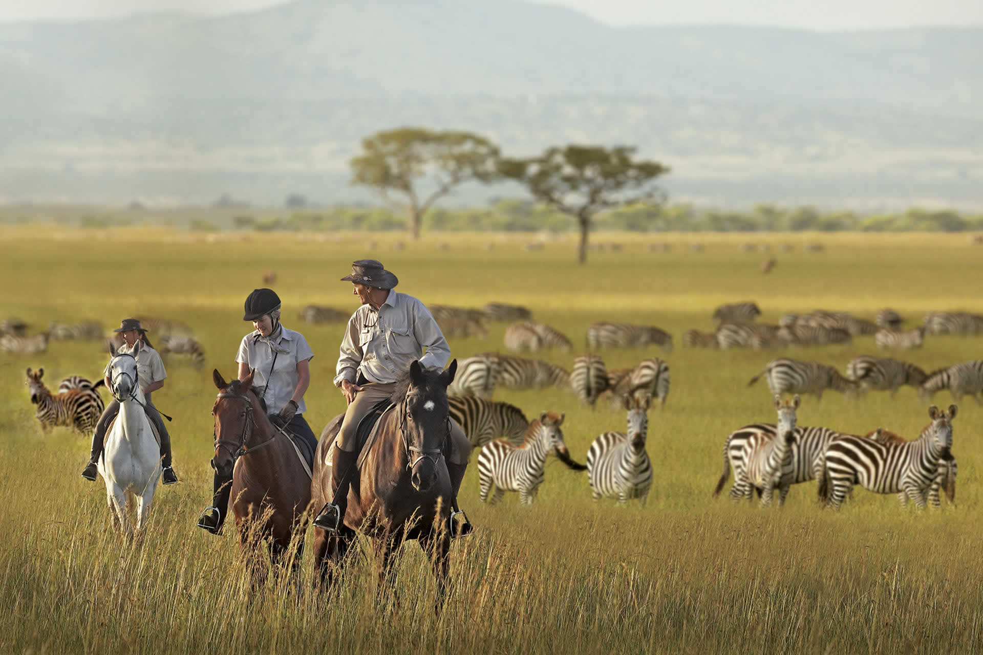 serengeti horse riding