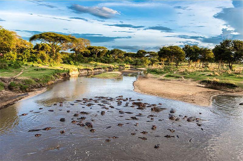 UNESCO Heritage Sites - Selous game reserve landscape